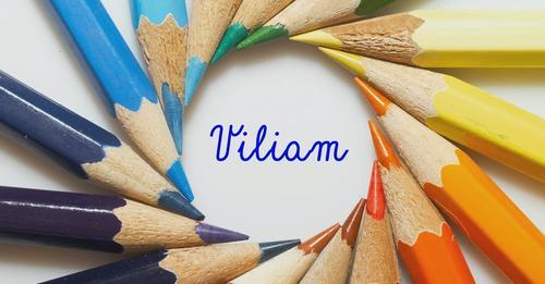 VILIAM – film z cyklu Vnímaví pre zraniteľných